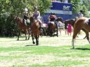 Glenorchy races.JPG